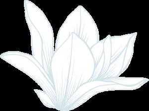 74027835a7b802cdeb5636cefc0e1f83-300x224 rev-flower-img